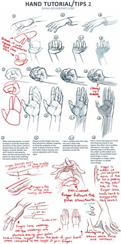 Anatomy Drawing Tutorial Hand Tutorial 2 by =Qinni - Drawing Lessons, Drawing Techniques, Drawing Tips, Art Lessons, Drawing Sketches, Drawing Hands, Art Drawings, Drawing Drawing, Cartoon Dog Drawing