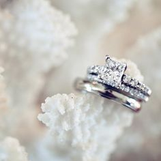 While the need for this ring is not even a thought for my future, THIS IS THE PERFECT RING!!! Princess cut, no yellow gold, not too big/small... <3 it!!!