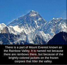 There IS a part of Mount Everest known as the Rainbow Valley. It is named not because there are rainbows there. but because of the brightly-colored jackets on the frozen corpses that litter the valley. Weird Facts, Fun Facts, Dubai Information, Funny Frozen Memes, Mind Blowing Facts, Did You Know Facts, Paris City, Life Advice, Best Memes