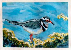 """{AVAILABLE} Mixed media painting: """"Three Banded Plover"""" #originalart #artforsale #jeanettehouse"""