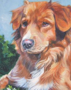 Nova Scotia Duck Tolling Retriever toller art print by TheDogLover