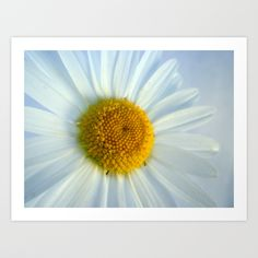 A Little Happiness Art Print by Ally Coxon - $20.00