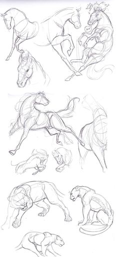 How to draw horses Horses. Pony. Draw. Sketch. art.: