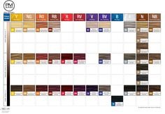 Paul Mitchell PM Shines Swatch Chart - Nov 2013.