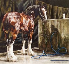 Mable Mae - Watercolor by Kara Castro *[Note: press 'visit', page will read error, press 'click here' to be redirected to castrofinearts.com] [ Beautiful Clydesdale Horse Painting ]