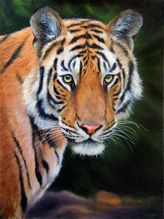 realistic oil painting tutorials | tiger oil painting | Wildlife Art / Learn to Paint Wildlife by Jason ...