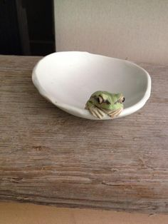 アマガエル豆皿(^-^) まだまだ作らねばなりません!! pic.twitter.com/pYFeYkpBSY