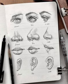 Augen, Nase, Mund & Ohren zeichnen lernen. Art Drawings Sketches Simple, Pencil Art Drawings, Realistic Drawings, Drawing Ideas, Drawing Guide, How To Sketch Faces, How To Sketch People, People To Draw, Pencil Sketches Of Faces