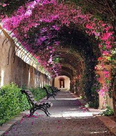 15 calles mágicas a la sombra de los árboles y las flores