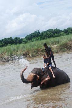 El baño del elefante (Nepal)