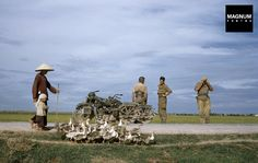Robert Capa. INDOCHINA. May, 1954. On the road from Namdinh to Thaibinh. | Magnum Photos