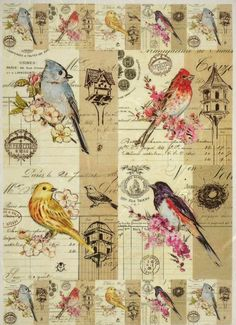 Rice Paper for Decoupage Decopatch Scrapbook Craft Sheet Vintage Birds