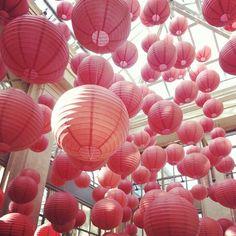 Chinese lanterns at Longwood Gardens