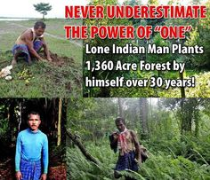 Never underestimate the power of 'One'. Lone Indian Man plants acre forest by himself over 30 years. Forest Ecosystem, Faith In Humanity Restored, Indian Man, Thing 1, Motivational Pictures, New Forest, All Family, Good People, Amazing People