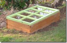neat coldframe made on raised bed with an old eight panel glass door.  Read more about how cold frames can help your plants and how to build them.