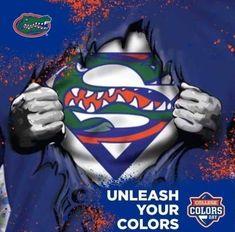 Uf Gator, Florida Gators Football, University Of Florida Football, College Football, Florida Gators Wallpaper, Tim Tebow, Football Memes, Really Funny Memes, Cover Photos