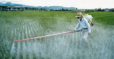 is this FARMING or is this chemical warfare?