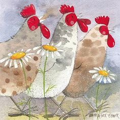 A laminated cork backed coaster by Alex Clark of three hens with daisies. Alex Clark Designs - Perfect gift for Animal Lovers. Chicken Painting, Chicken Art, Painting & Drawing, Watercolor Paintings, Rooster Painting, Fleurs Diy, Clark Art, Chickens And Roosters, Pintura Country
