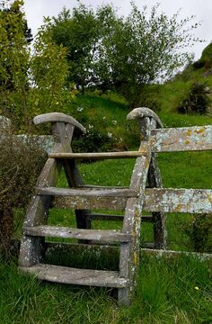 stile (a step or set of steps for passing over a fence or wall) Note the lichen on the fence.