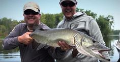 """Video: Chasing Big Muskies in """"The Pursuit"""" - Orvis News"""