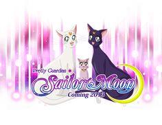 Sailor Moon 2013! Moon Kitties by scpg89.deviantart.com