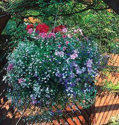 basket of blooms.