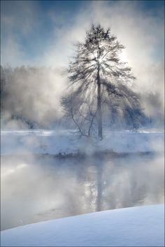 elenaburova:      Foggy morning, Moscow region, Pehorka river  airpano.com