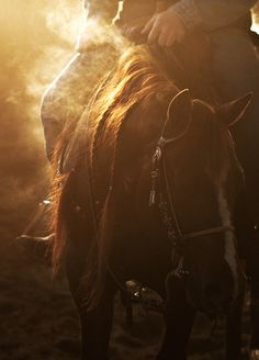 Beautiful picture of an early morning ride. It captures country life so perfectly! #Cowboy #Horse #LifeoutWest