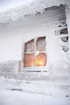 Snowflakes swirl down gently in the deep blue haze beyond the windows. The outside world is a dream. Inside the fireplace is brightly lit and the Yule log crackles with orange and crimson sparks. There's a steaming mug in your hands warming your fingers. There's a friend seated across from you in the cozy chair warming your heart. There is a mystery unfolding. ..Vera Nazarian