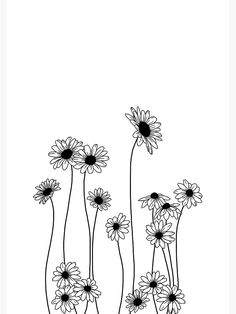 Flower Line Drawings, Botanical Line Drawing, Floral Drawing, Flower Design Drawing, Daisy Flower Drawing, Butterfly Line Drawing, Flower Pattern Drawing, Simple Flower Drawing, Wildflower Drawing
