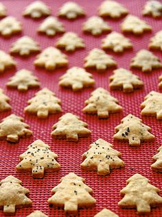 Cheddar Poppy Seed Crackers in holiday shapes... from Ottolenghi, the Cookbook