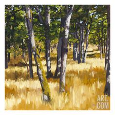 Woodlands Bright Giclee Print by Sarah Waldron at Art.com