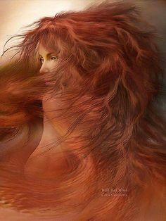 Wild red wind