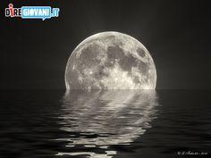 Moon Reflex by Fabio Lomuoio