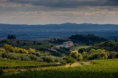 tutta l'Italia Chianti, Castelnuovo Berardenga