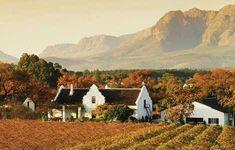 Beautiful Winelands...