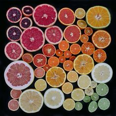 Citrus Fest by Emily Blincoe. Unity in shape and proximity.