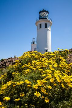 Anacapa #Lighthouse - Channel Islands, #CA -- Greg Clure http://www.roanokemyhomesweethome.com