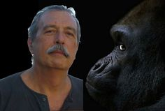 Think Kong è il pensiero che specula sull'umana condizione che saltuariamente evolve in scampoli di poesia