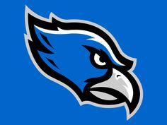 Farmington Valley Hawks Mascot logo by Matt Walker