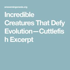 Incredible Creatures That Defy Evolution—Cuttlefish Excerpt