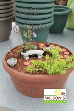 Fairy Garden | Flickr - Photo Sharing!