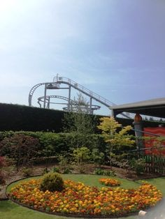 The new Ying Yang Garden, adjacent to the Dragon Ride, near the Cobra Roller Coaster.