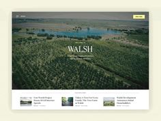 Walsh TX Homepage by Conner Drew #Design Popular #Dribbble #shots