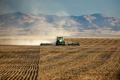 Lonely Working https://www.toddklassy.com/montana-blog/2014/8/2/20-photos-of-wheat