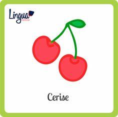 Cereza/ Cerise - Frutas en Francés/ Fruits en Français - Lingua Institute