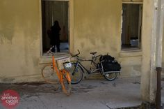 Public and Xtracycle