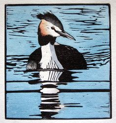 Great Crested Grebe - hand coloured linocut - Lisa Hooper