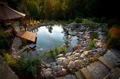 A natural swimming pool or pond cleans the water with plants. It's nature's filter system. Environmentally friendly and they look awesome. Win-win.