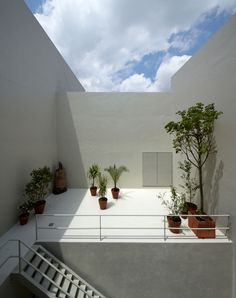 adamo-faiden · Venturini House. Buenos Aires, Argentina · Divisare